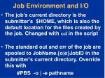 job environment and i o