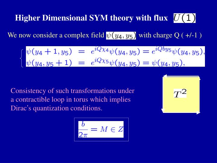 Higher Dimensional SYM theory with flux