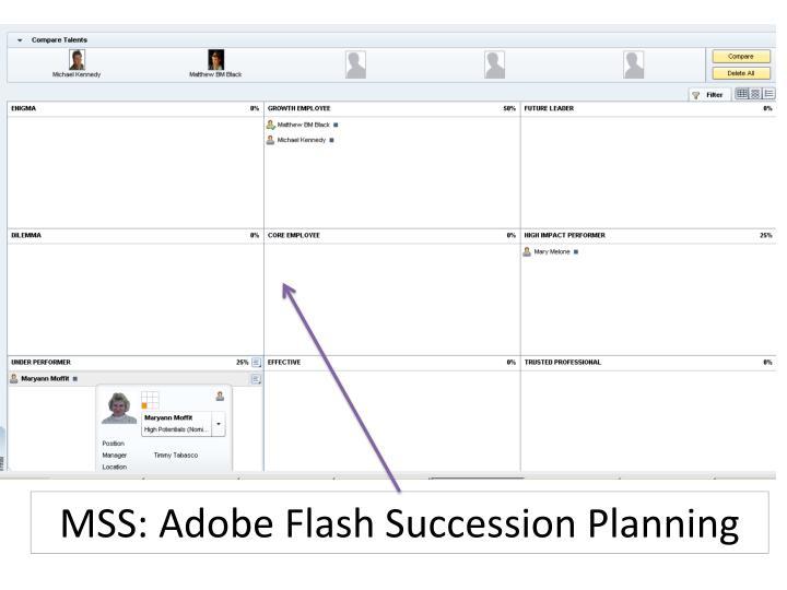 MSS: Adobe Flash Succession Planning