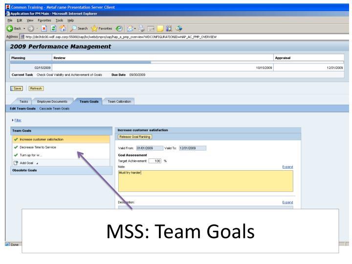 MSS: Team Goals