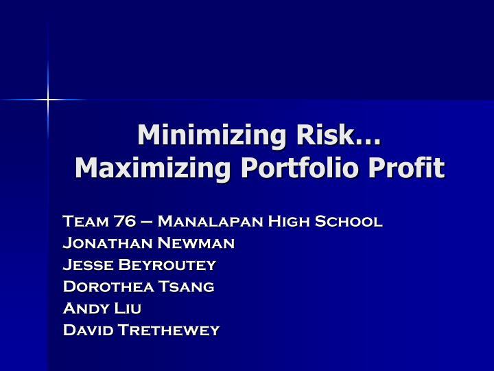 Minimizing risk maximizing portfolio profit