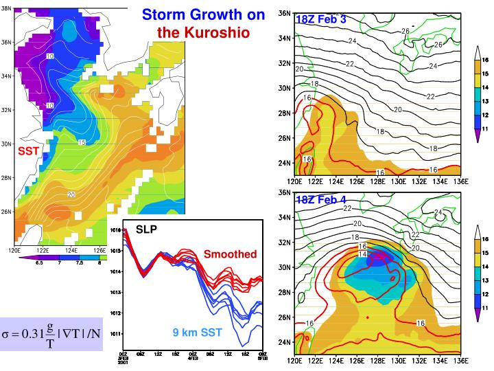 Storm Growth on