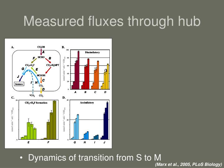 Measured fluxes through hub