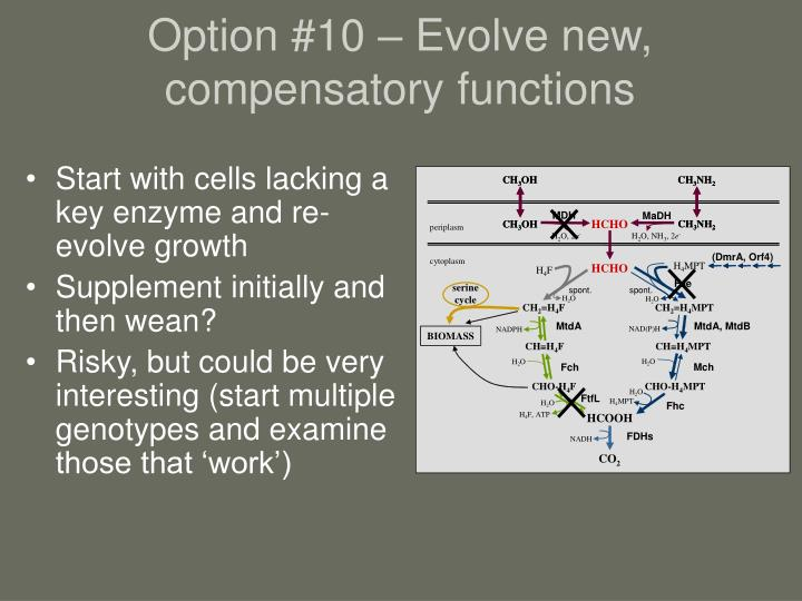 Option #10 – Evolve new, compensatory functions