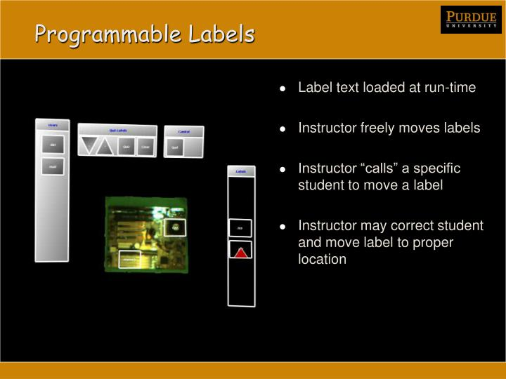 Programmable Labels