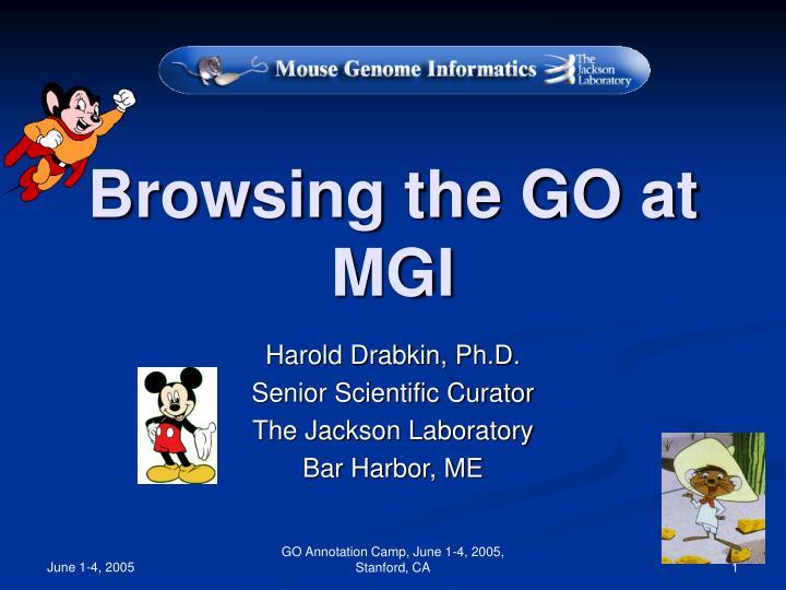 Browsing the go at mgi