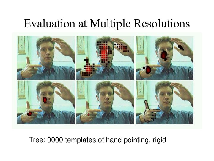 Evaluation at Multiple Resolutions
