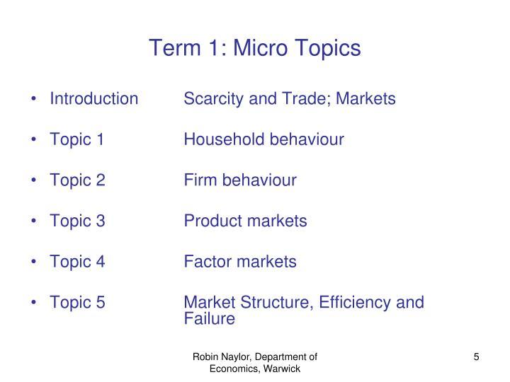 Term 1: Micro Topics
