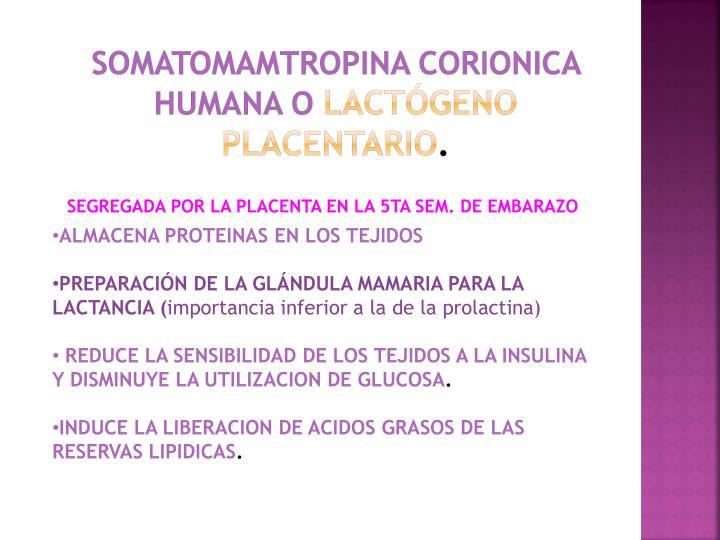 SOMATOMAMTROPINA CORIONICA HUMANA O