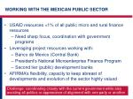 working with the mexican public sector