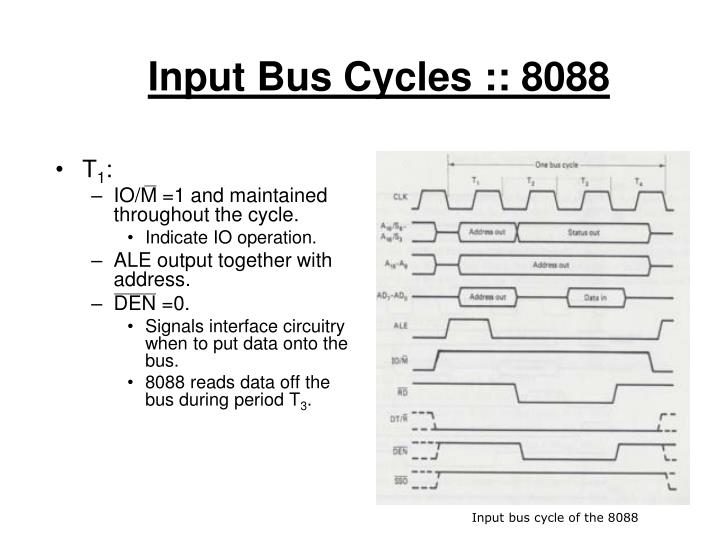 Input Bus Cycles :: 8088