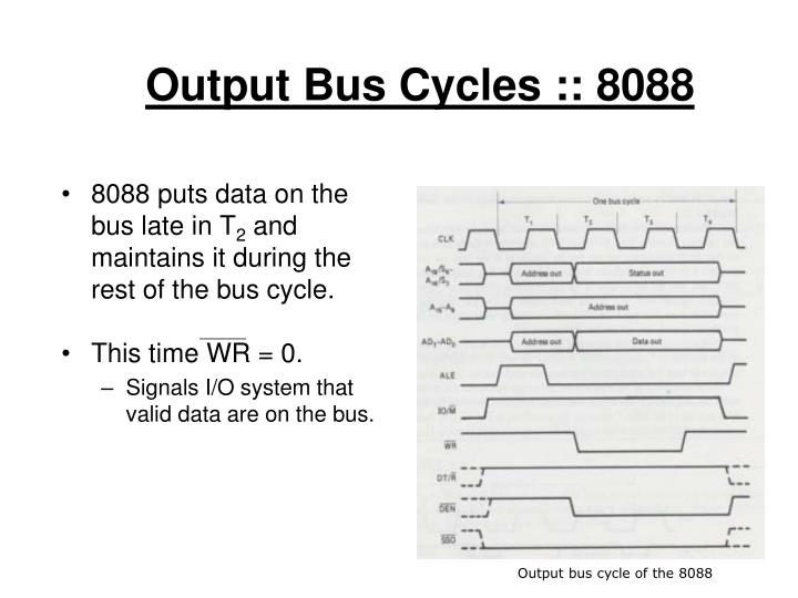 Output Bus Cycles :: 8088