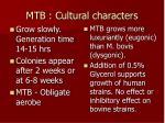 mtb cultural characters