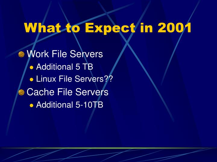 What to Expect in 2001