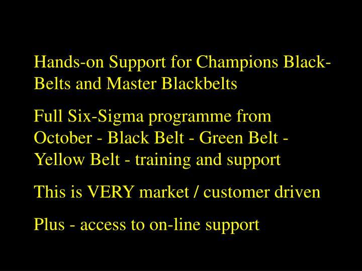 Hands-on Support for Champions Black-Belts and Master Blackbelts