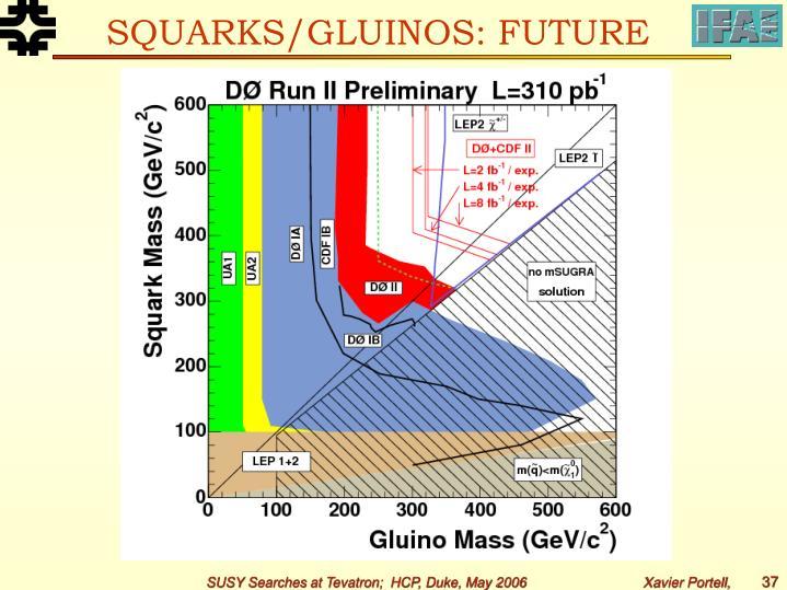 SQUARKS/GLUINOS: FUTURE
