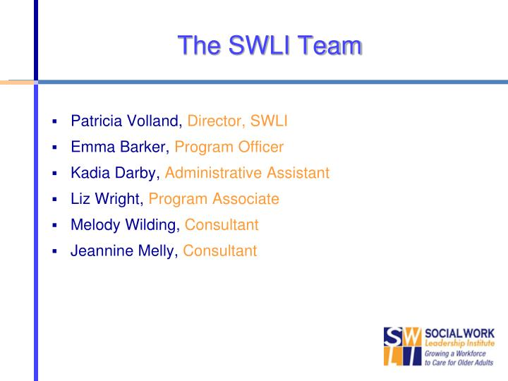 The SWLI Team