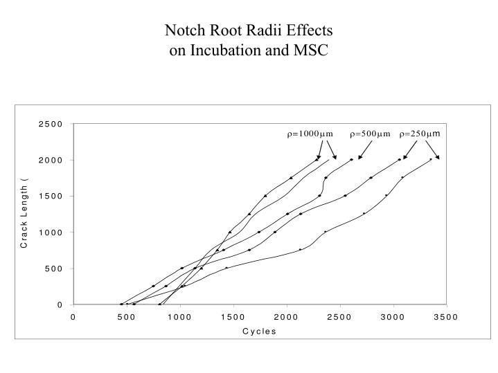 Notch Root Radii Effects