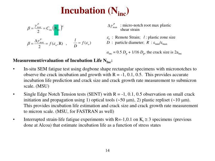 Incubation (N