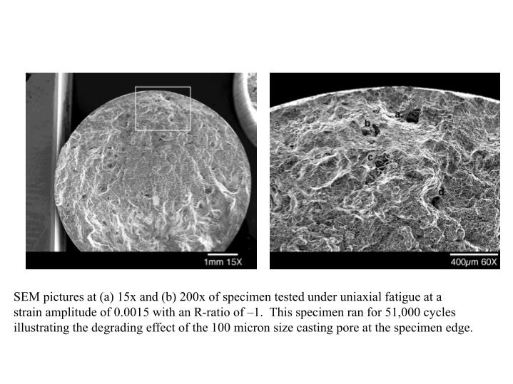 SEM pictures at (a) 15x and (b) 200x of specimen tested under uniaxial fatigue at a