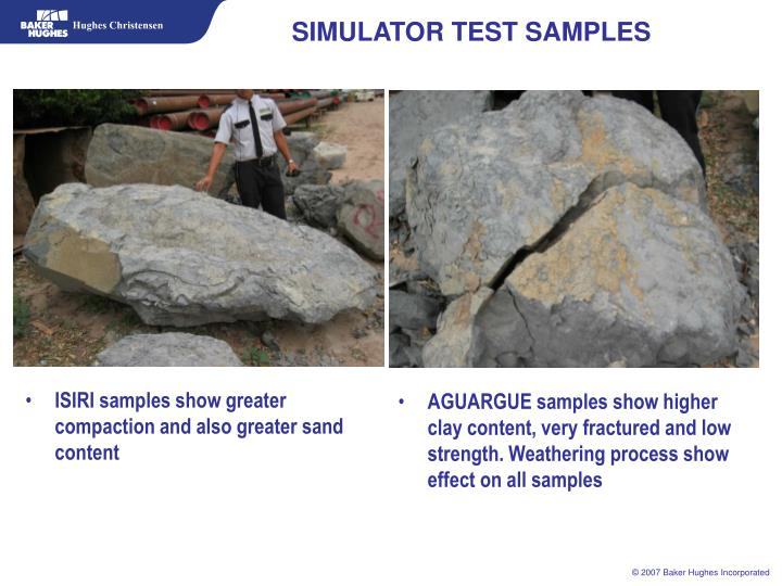 SIMULATOR TEST SAMPLES