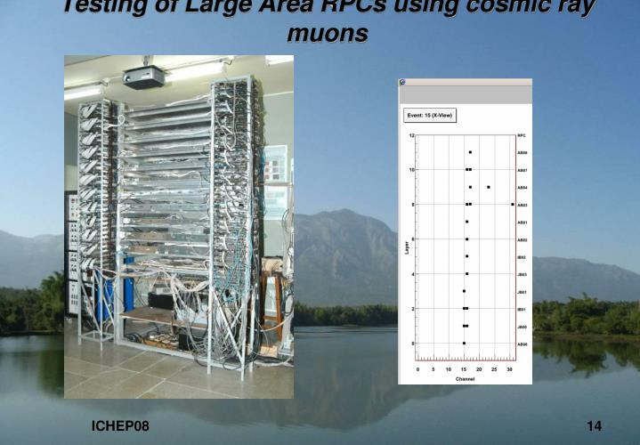 Testing of Large Area RPCs using cosmic ray muons