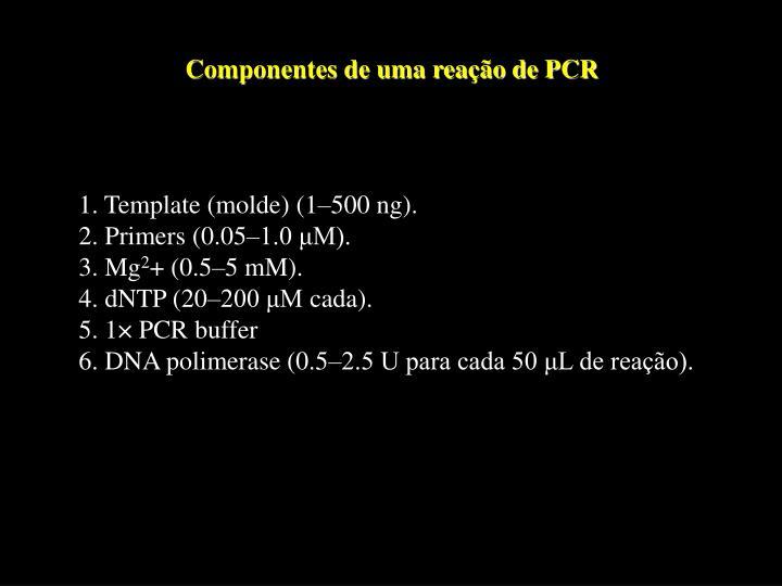 Componentes de uma reação de PCR