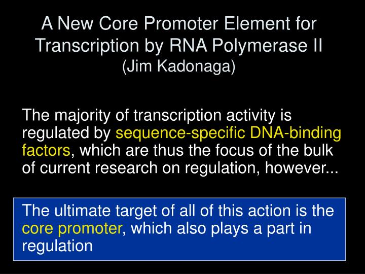 A New Core Promoter Element for Transcription by RNA Polymerase II