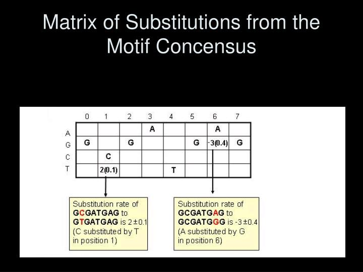 Matrix of Substitutions from the Motif Concensus