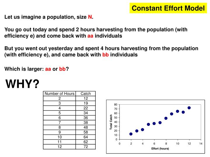 Constant Effort Model