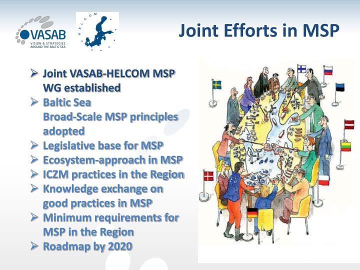Joint Efforts in MSP