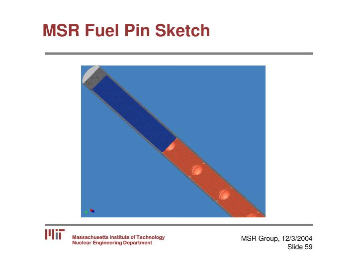 MSR Fuel Pin Sketch