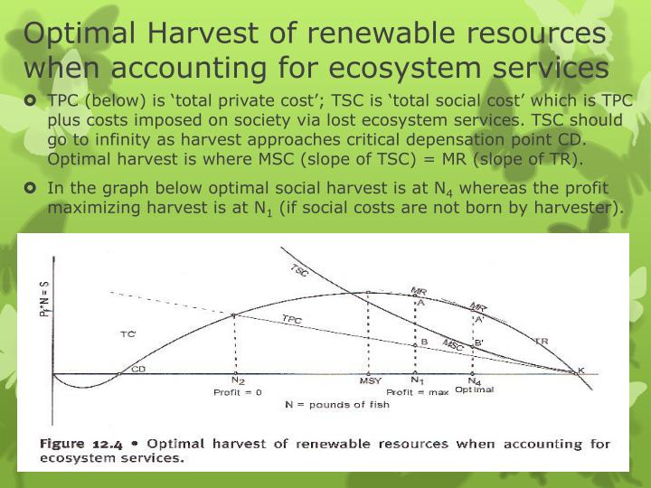 Optimal Harvest of renewable resources when accounting for ecosystem services