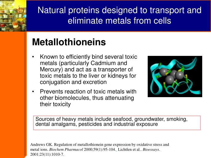 Andrews GK. Regulation of metallothionein gene expression by oxidative stress and metal ions.