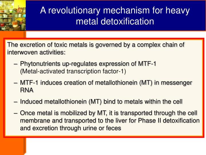 A revolutionary mechanism for heavy metal detoxification