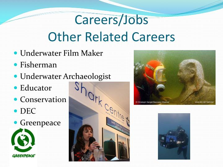 Careers/Jobs