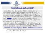 international authorization1