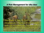 a risk management for sika deer