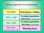 density dependent hunting pressure