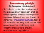 precautionary principle rio declaration 1992 principle 15