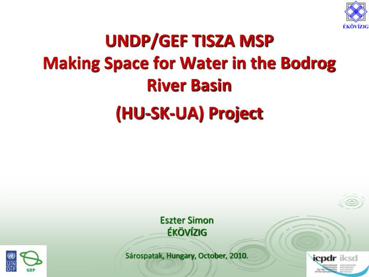 undp gef tisza msp making space for water in the bodrog river basin hu sk ua project n.