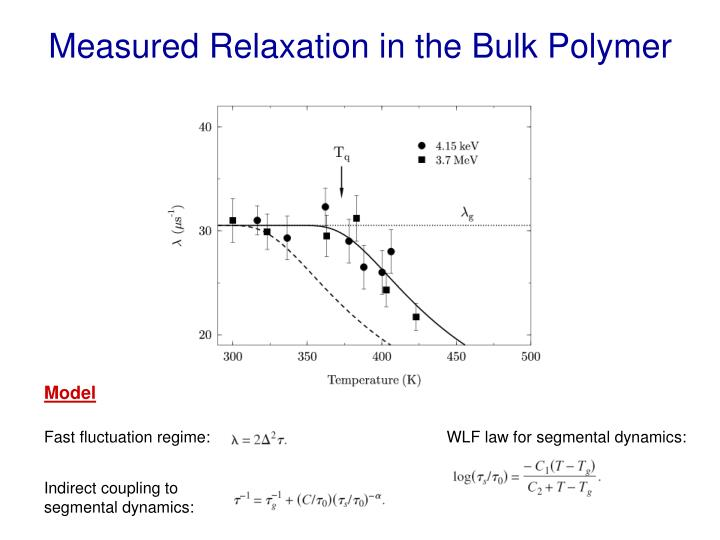Measured Relaxation in the Bulk Polymer