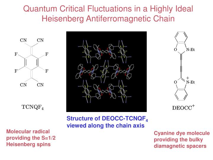 Quantum Critical Fluctuations in a Highly Ideal Heisenberg Antiferromagnetic Chain
