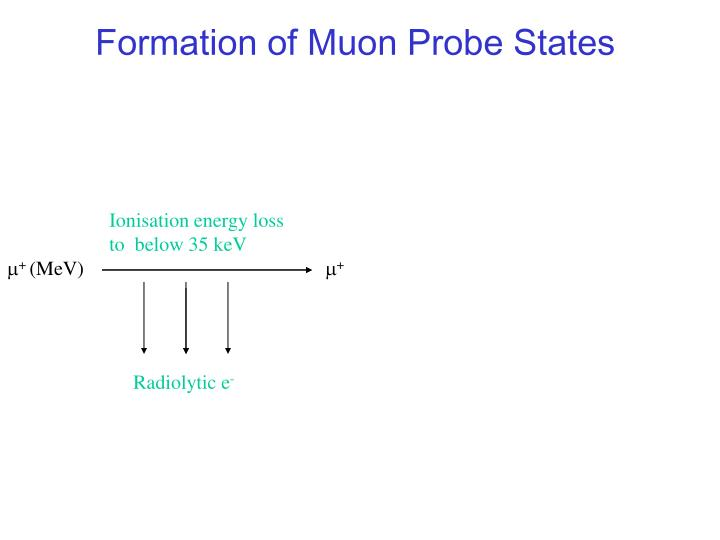 Formation of Muon Probe States