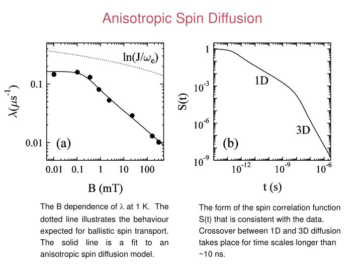 Anisotropic Spin Diffusion