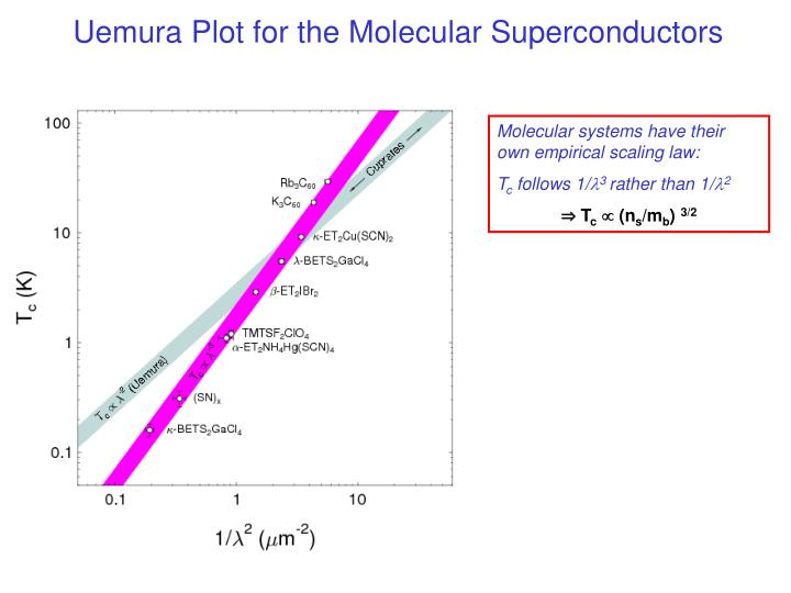 Uemura Plot for the Molecular Superconductors