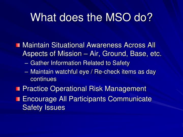 What does the MSO do?