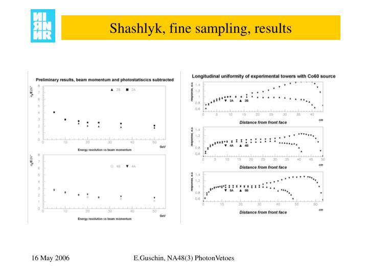Shashlyk, fine sampling, results