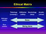ethical matrix