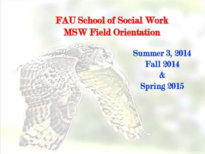 fau school of social work msw field orientation